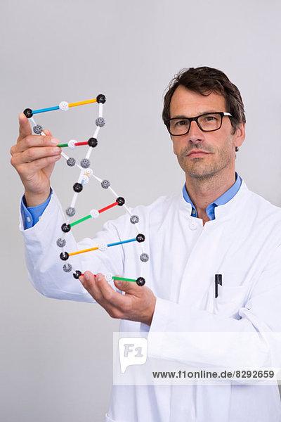 Porträt eines Wissenschaftlers mit DNA-Molekularmodell