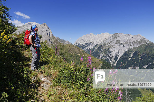 Austria  Carinthia  Carnic Alps  Hiker looking at Mountainscape