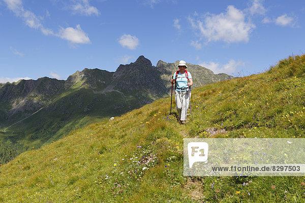 Austria  Carinthia  Carnic Alps  female hiker