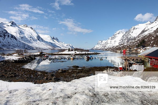 Fischereihafen  Fischerhafen  Dorsch  Europa  trocknen  unterhalb  Bootshaus  Dachrinne  Skandinavien  Troms