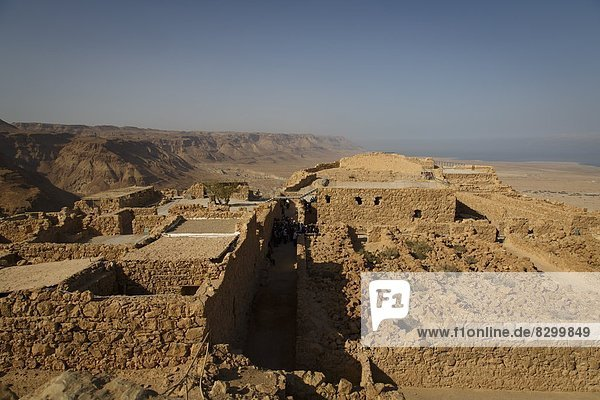 Masada fortress  UNESCO World Heritage Site  on the edge of the Judean Desert  Israel  Middle East