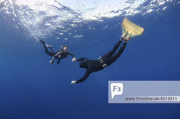 Freitaucher  ein Taucher mit einer Monoflosse