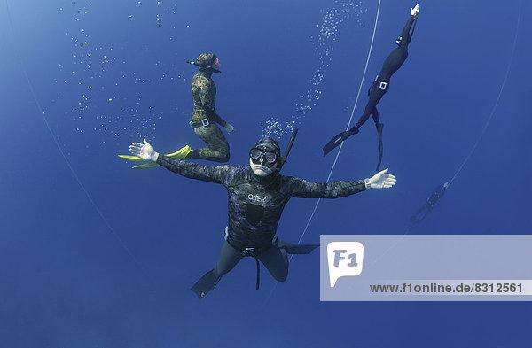 Freitaucher posieren unter Wasser