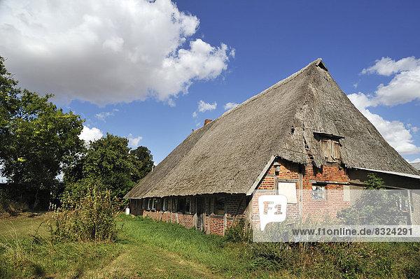 Dach niedrig Bauernhaus Reetdach alt