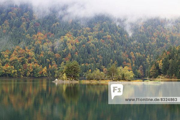 Eibsee im Herbst