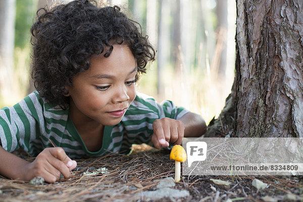 Bäume an den Ufern eines Sees. Ein liegendes Kind inspiziert einen kleinen gelben Pilz.