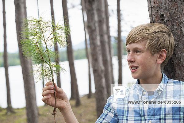 Ein Junge steht zwischen Bäumen am Ufer eines Sees.