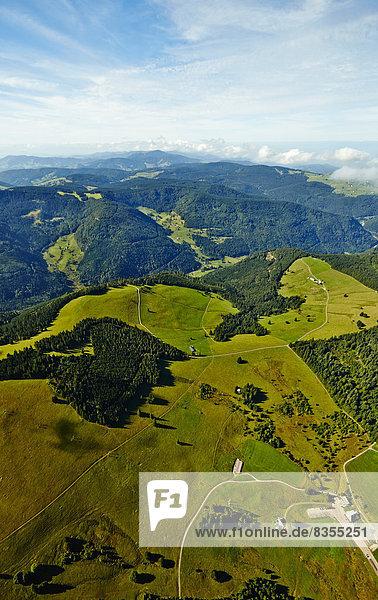 Weideland und Wald im Schwarzwald  Oberried  Baden-Württemberg  Deutschland Weideland und Wald im Schwarzwald, Oberried, Baden-Württemberg, Deutschland