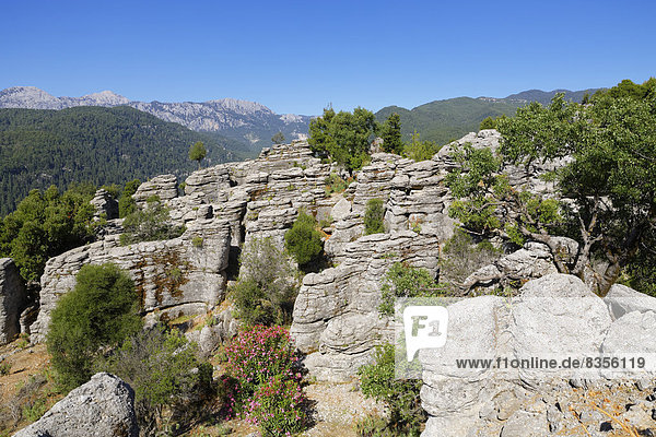 Schichtgestein  Taurusgebirge  Köprülü-Kanyon-Nationalpark  Provinz Antalya  Türkei