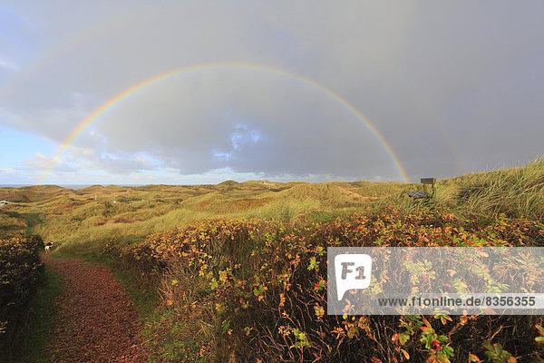 Regenbogen über Dünenlandschaft  North Jutland  Dänemark