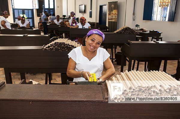 Woman rolling cigars in the Dannemann cigar company in Cachoeira  Bahia  Brazil  South America