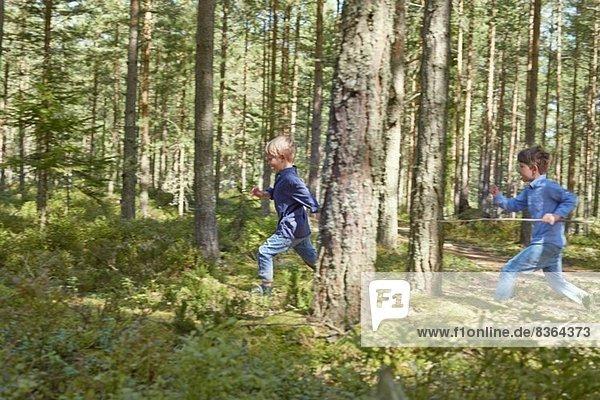 Brüder laufen durch den Wald und tragen Stöcke.