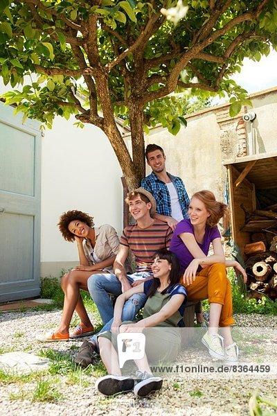 Gruppe von Freunden unter einem Baum sitzend