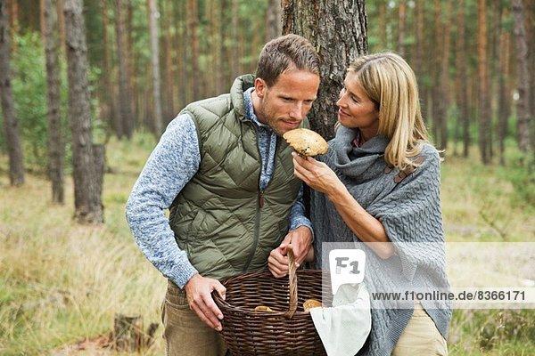 Mittleres erwachsenes Paar auf der Suche nach Pilzen im Wald