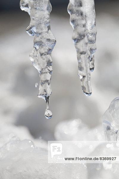 hoch  oben  nahe  Wasser  Wassertropfen  Tropfen  2  Eiszapfen  Alberta  Calgary  Kanada