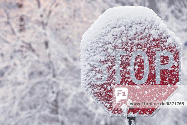 Winter  bedecken  Zeichen  Ende  Stoppschild  Kanada  Ontario  Signal  Schnee  einstellen