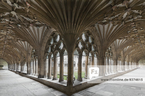 verziert  Kathedrale  Säule  Decke  England  Kent