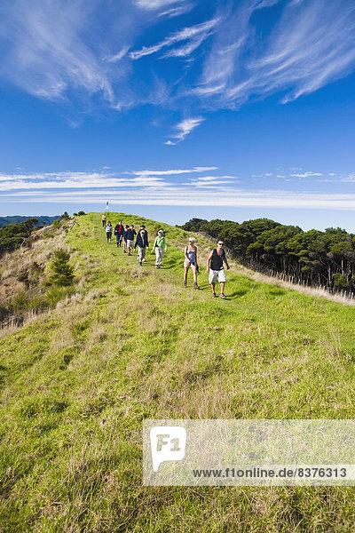 Mensch  Menschen  gehen  Menschengruppe  Menschengruppen  Gruppe  Gruppen  vorwärts  Wiese  Neuseeland