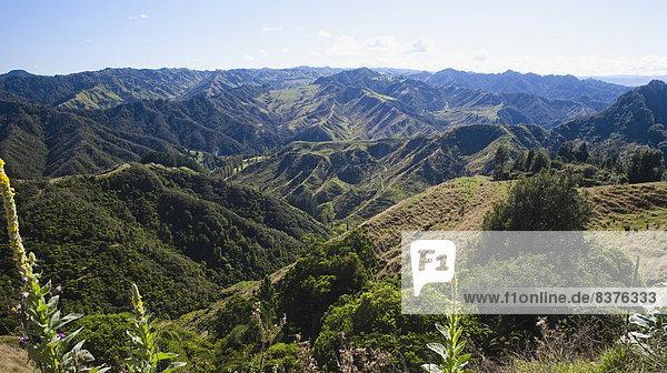 Nationalpark arbeiten Bauernhof Hof Höfe Entdeckung neu Neuseeland