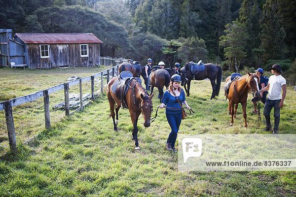 Nationalpark arbeiten Bauernhof Hof Höfe Lodge Landhaus blau reiten - Pferd Ente neu Neuseeland