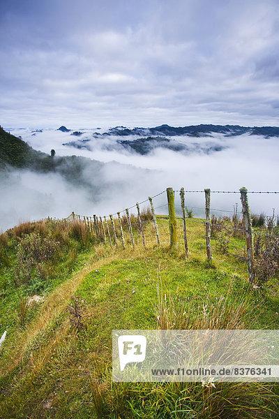 Nationalpark Morgen über Hügel Nebel Lodge Landhaus blau Ansicht Ente Neuseeland
