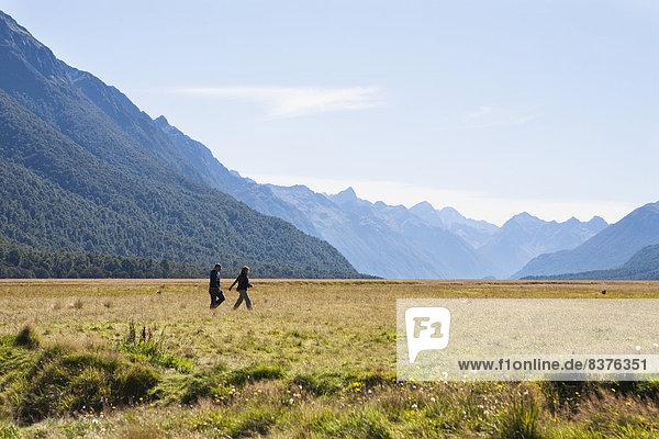 leer  klar  Forschung  umgeben  Geräusch  Milford  neu  Neuseeland
