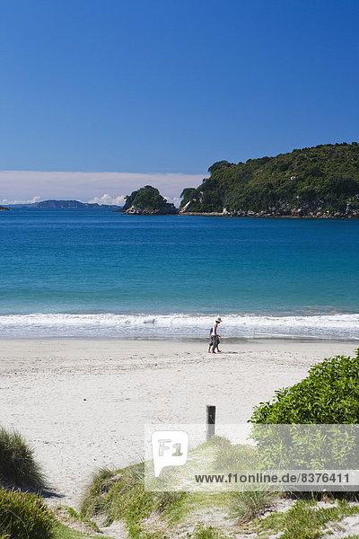 gehen  Strand  Küste  vorwärts  Coromandel  neu  Neuseeland  Halbinsel