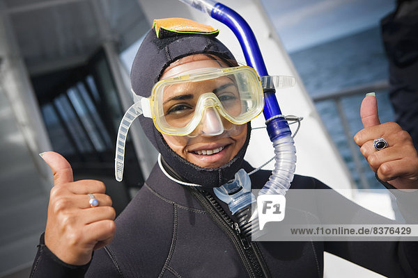 Delphin  Delphinus delphis  Start  Kleidung  schwimmen  Tauchgang  Dalbe  Fahrgestell  bekommen  Kaikoura  Neuseeland