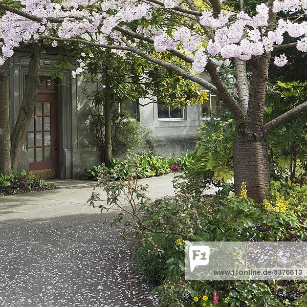 Amerika Türschloss Schloss Schlösser Verbindung Seattle