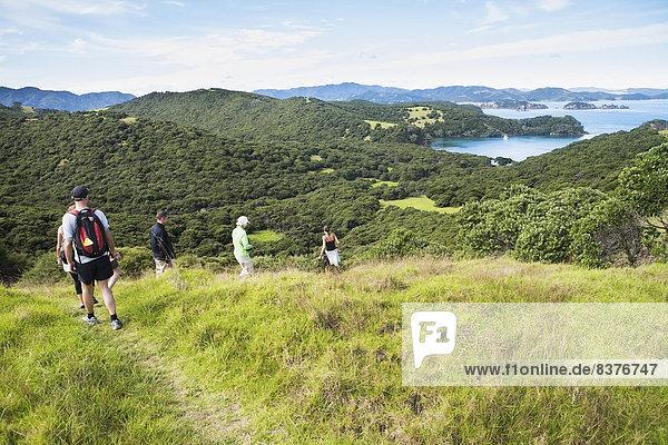 gehen  folgen  Insel  Neuseeland