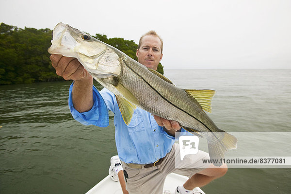 Vereinigte Staaten von Amerika  USA  zeigen  Fisch  Pisces  Mann  Stolz  Frische  fangen  Boot  Florida