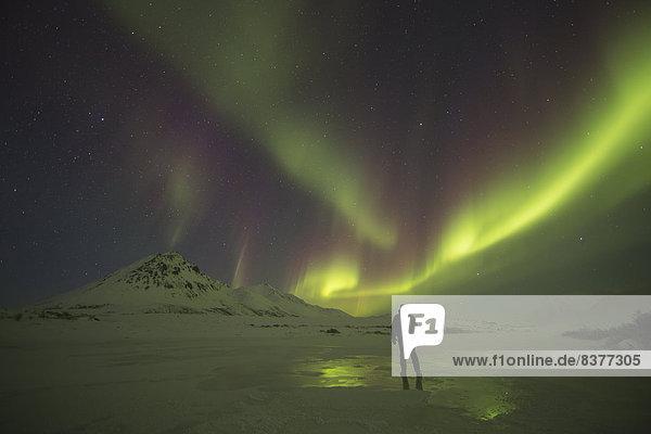 Mensch  Fluss  Beleuchtung  Licht  Norden  unterhalb  Kanada  gefroren  Yukon