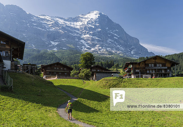 Alpen Aletschgletscher UNESCO-Welterbe Grindelwald schweizerisch Schweiz Kanton Bern