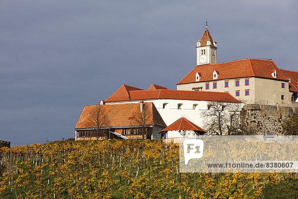 Riegersburg im Herbst  vorne ein Weinberg  Riegersburg  Oststeiermark  Steiermark  Österreich