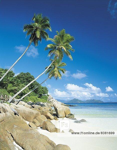 Hintergrund  Insel  rauh  La Digue  Seychellen