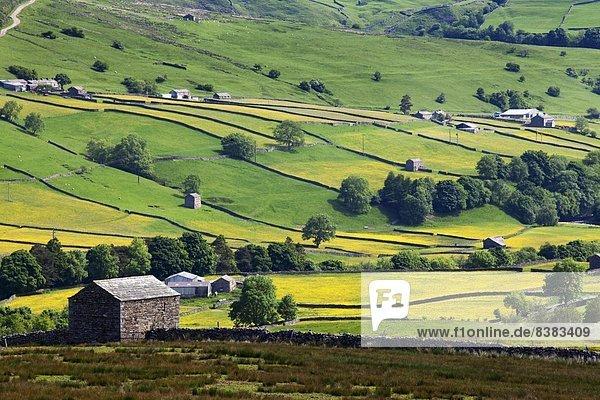 hoch  oben  nahe  Europa  Sommer  Großbritannien  Fernverkehrsstraße  Yorkshire and the Humber  England  Swaledale