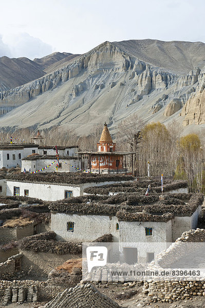 Tibetan architecture  houses with flat roofs  erosion in the mountains  typical stupa in the village Charang  Upper Mustang  Nepal  Asia