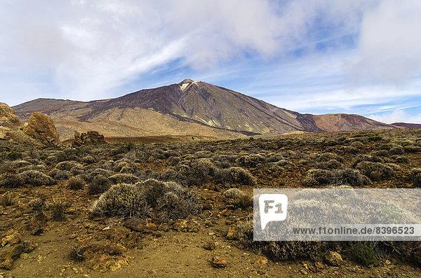 Lavalandschaft im Teide-Nationalpark  UNESCO-Weltnaturerbe  Teneriffa  Kanaren  Spanien