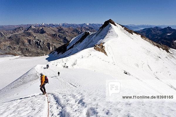 Bergsteiger auf dem Gipfelgrat des Monte Cevedale  hinten die Zufallspitze  Südtirol  Italien Bergsteiger auf dem Gipfelgrat des Monte Cevedale, hinten die Zufallspitze, Südtirol, Italien