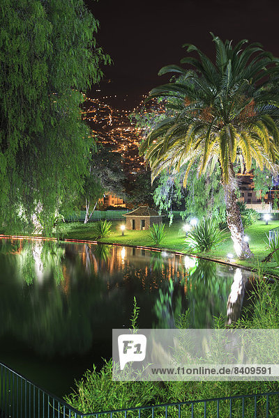 Portugal  Insel Madeira  Funchal  Tropenpark bei Nacht