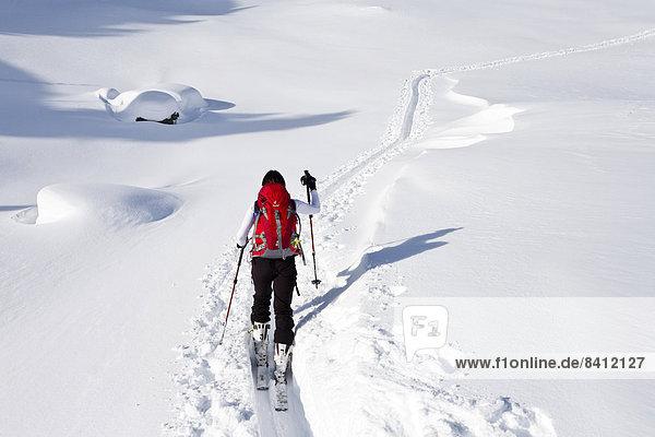 Skitourengeher beim Aufstieg auf den Juribrutto am Passo Valles  Predazzo  Fleimstal  Dolomiten  Trentino  Italien
