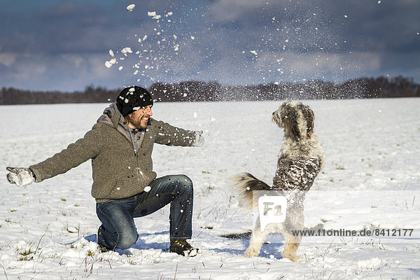 A man and his dog are playing in the snow on a field near Wustermark  Havelland  Brandenburg  Germany