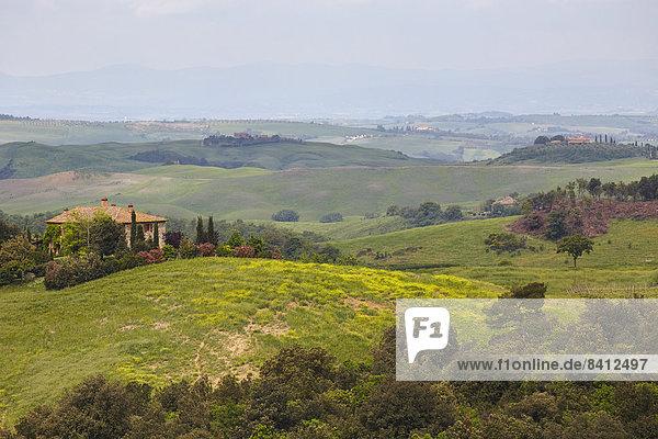 Hügelige Landschaft der Crete Senesi  Trequanda  Toskana  Italien