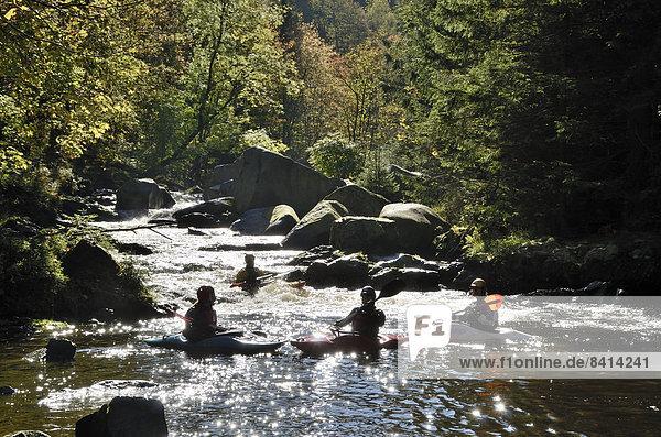 Kanuten auf der Oker im Okertal  Harz  Niedersachsen  Deutschland