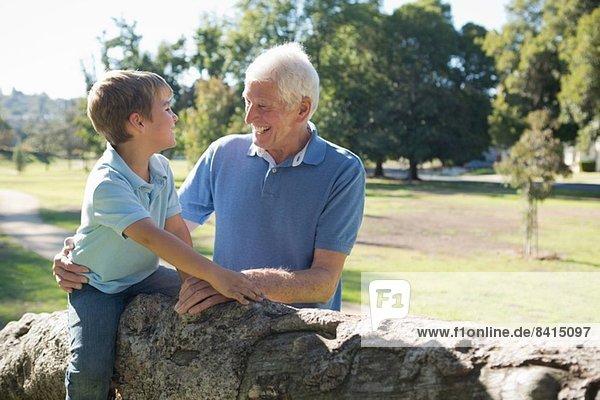 Grossvater und Enkel im Park  auf einem Baum sitzend