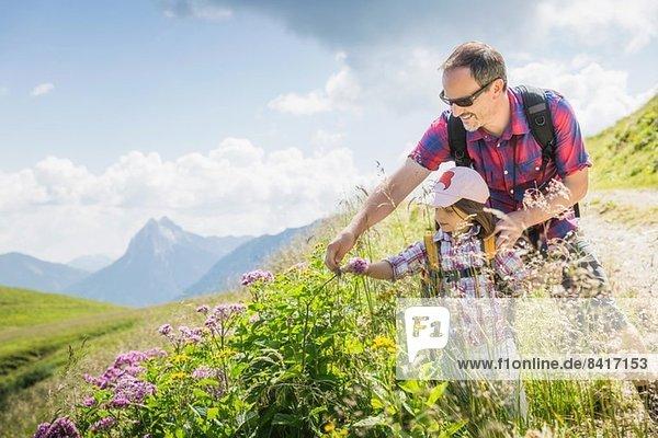 Vater und Tochter beim Betrachten von Pflanzen,  Tirol,  Österreich