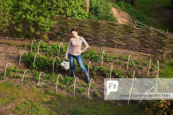 Junge Frau im Gemüsegarten  hoher Winkel