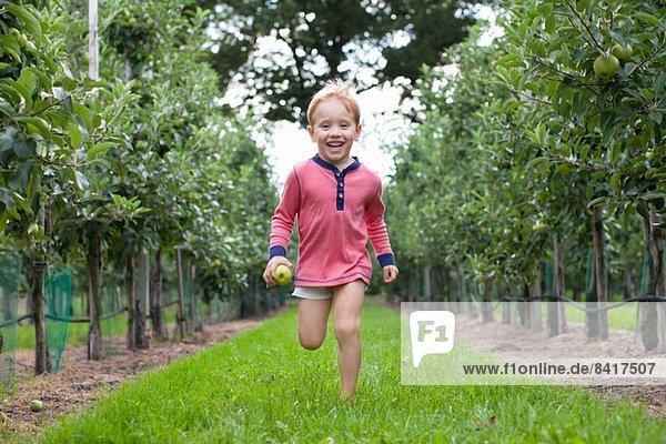 Junge rennt durch den Apfelgarten
