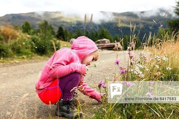 Mädchen beim Spaziergang im Berg  blieb stehen  um Blumen zu betrachten