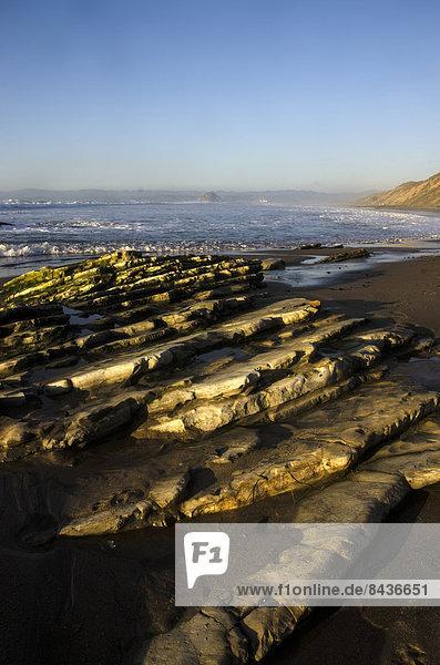 USA  United States  America  California  central coast  sea  coast rocks  Pacific Ocean
